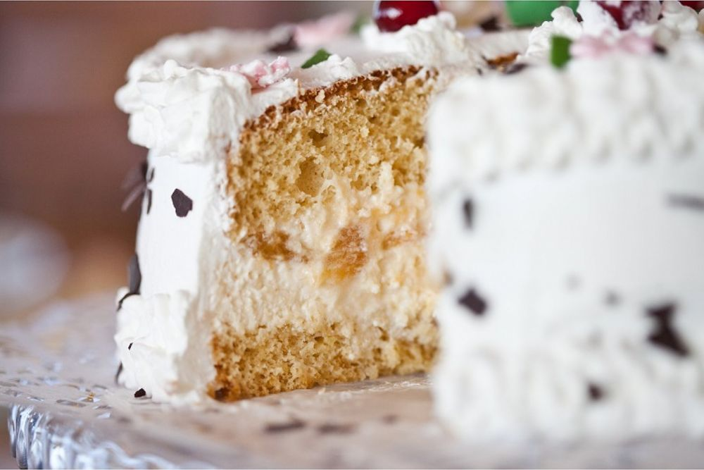 Torta od skute