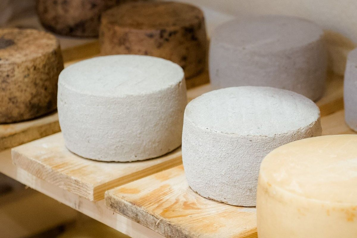Ashes cheeses (sottocenere) price, sale, discount Croatia