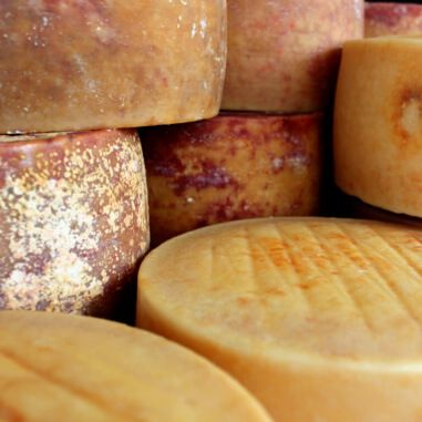 Pag raw milk cheese price, sale, discount Croatia