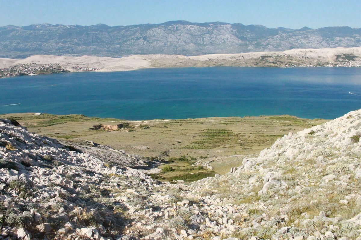 Nature of Pag
