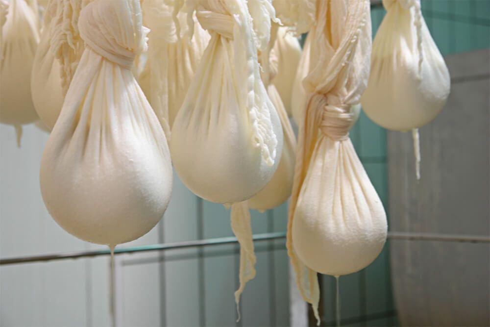 Kuh Weißkäse (Topfen / Quark) Preis, Verkauf, Rabatt Kroatien