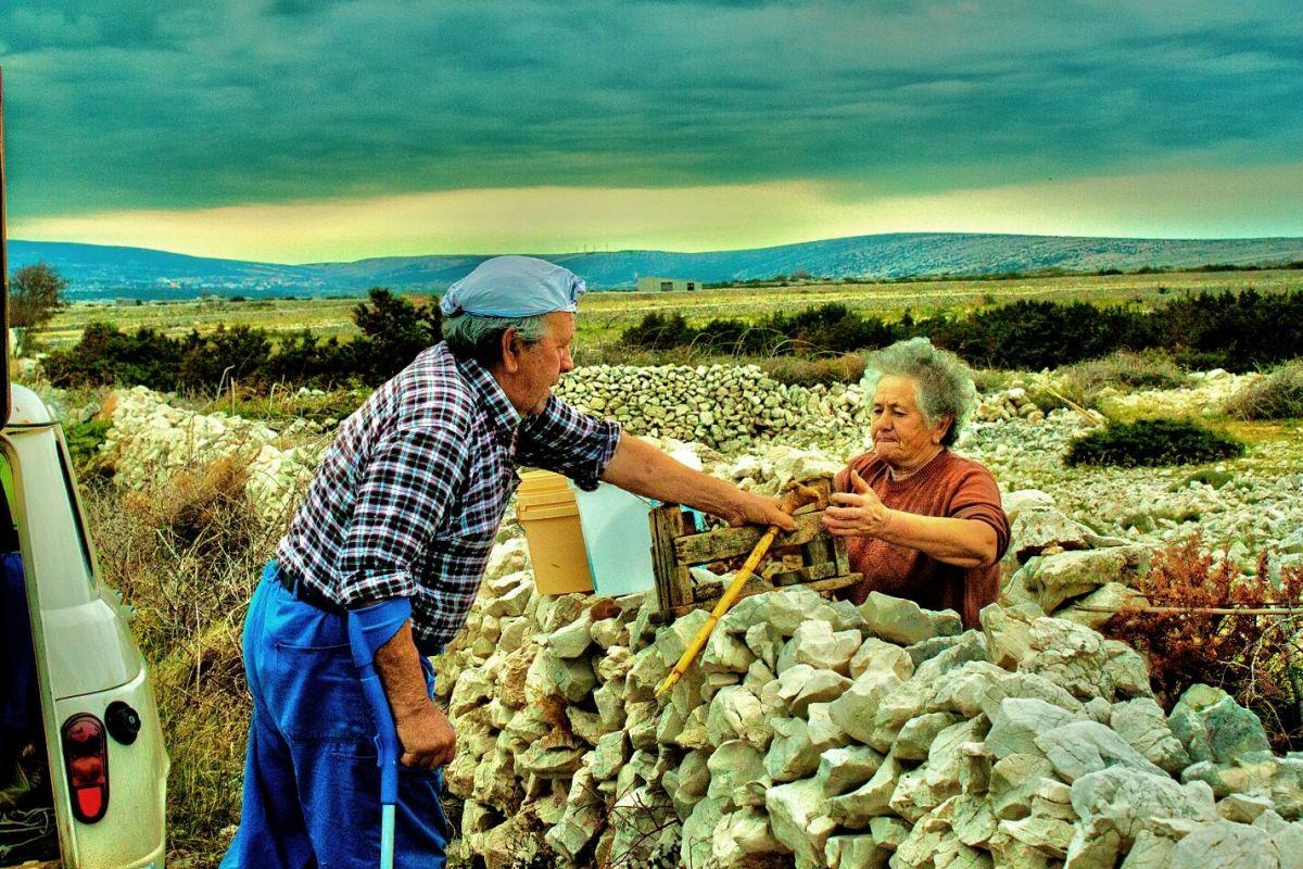 Nos fiables associés - Nikola et Katica Gligora